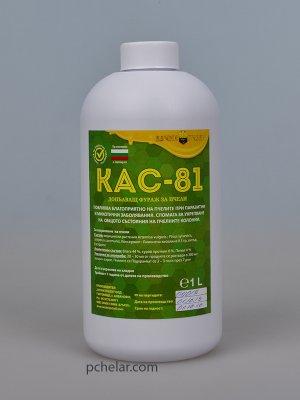 КАС - 81